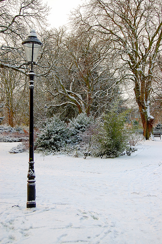 Narnia by Steve on Flickr